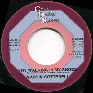 TRY WALKING IN MY SHOES